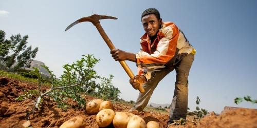 Caritas International Une économie de cœur au cœur de l'économie avec Caritas au Burundi – le 12 mai