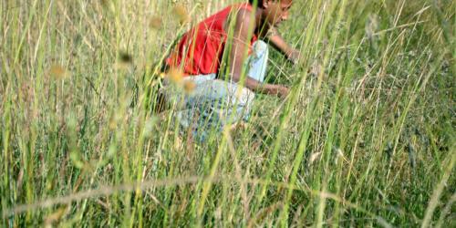 Caritas International Uitbreiding werkgelegenheid bij de Menja in het district Gimbo