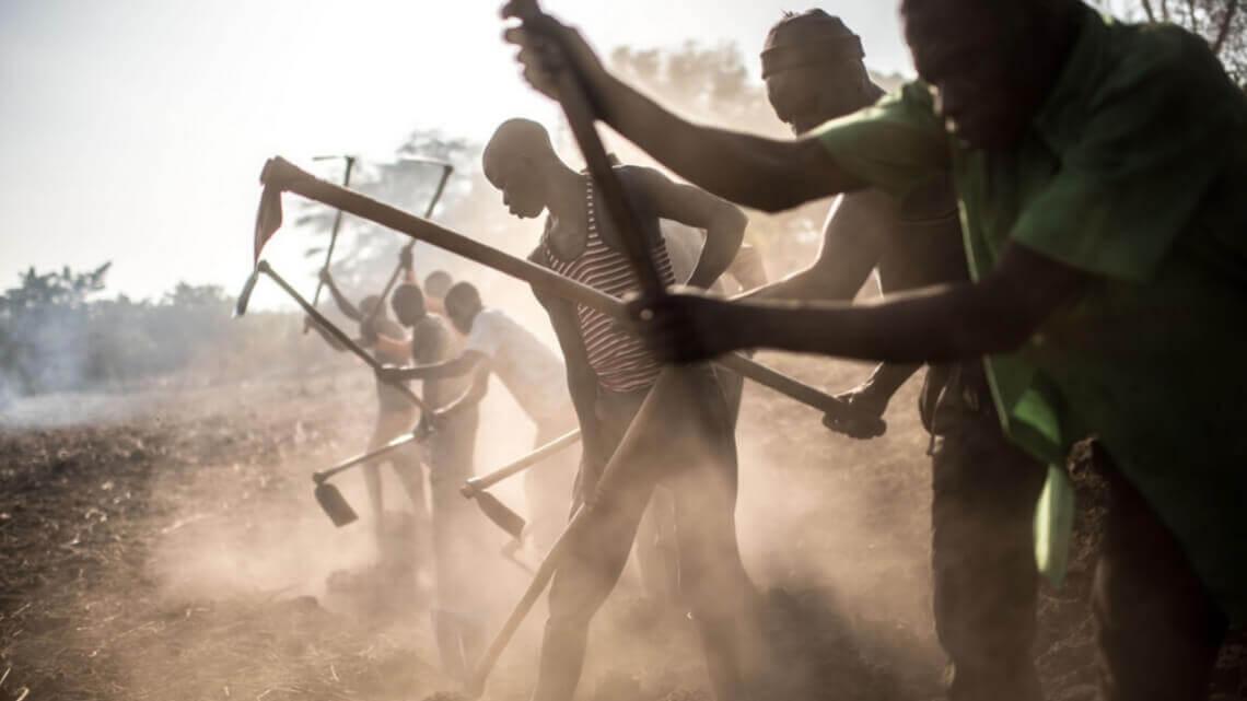 Caritas International Famine au Soudan du Sud : aider de toute urgence