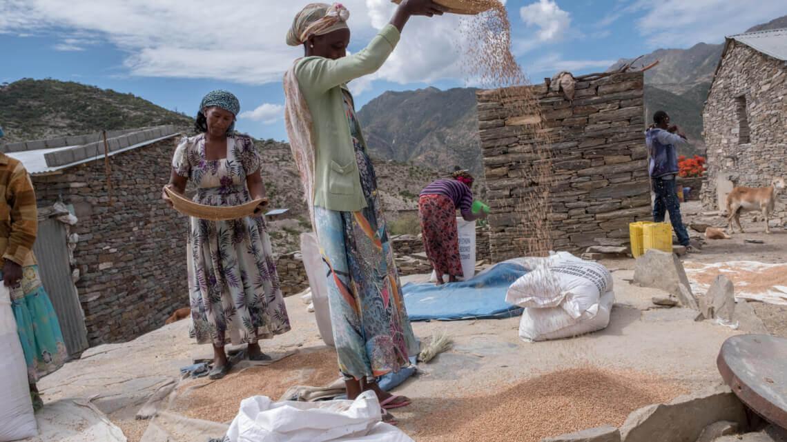 Caritas International Duurzame verbetering van de voedselzekerheid in Ganta-Afeshum en Gulomakda