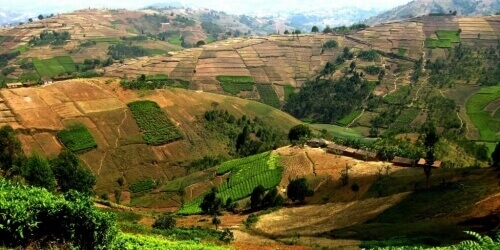 Caritas International Belgique On veut comprendre! Comment ça se passe au Burundi?
