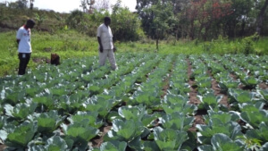 news-sud-soudan-16092016-5