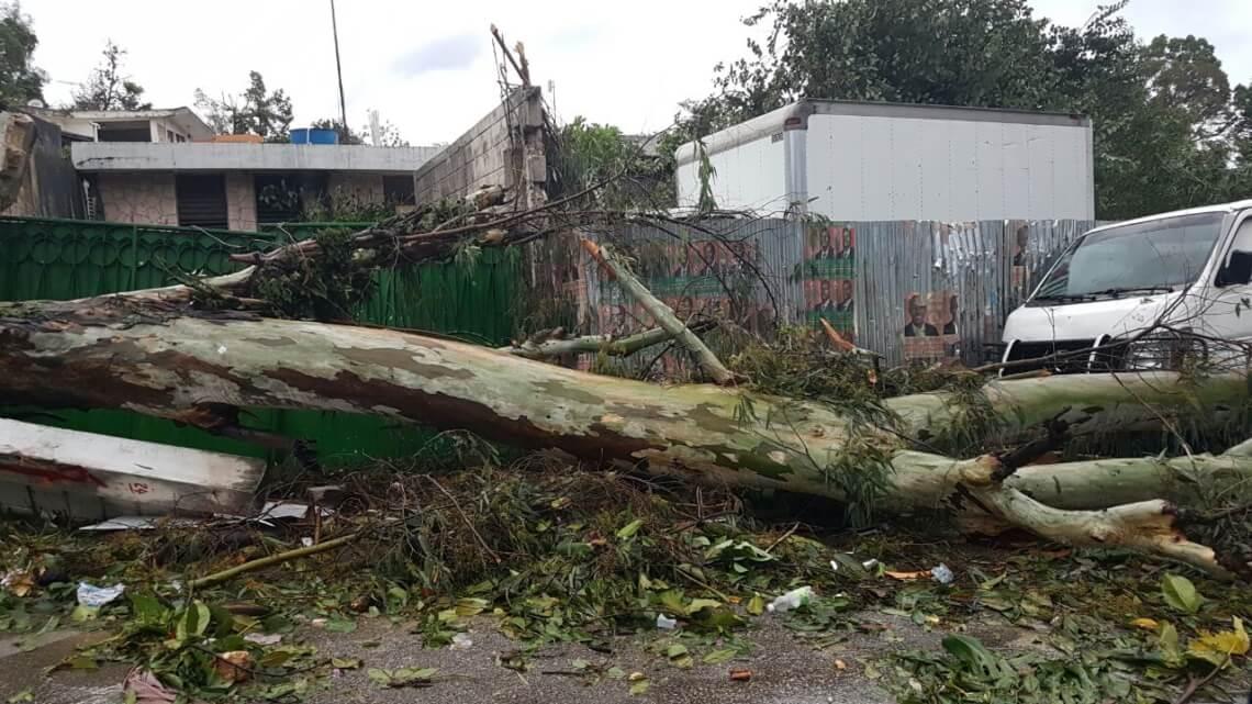 Caritas International Matthew détruit les efforts de reconstruction en Haïti.