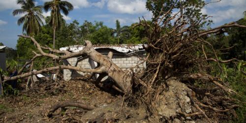 Caritas International Belgium Haïti: Alphonse a besoin de semences