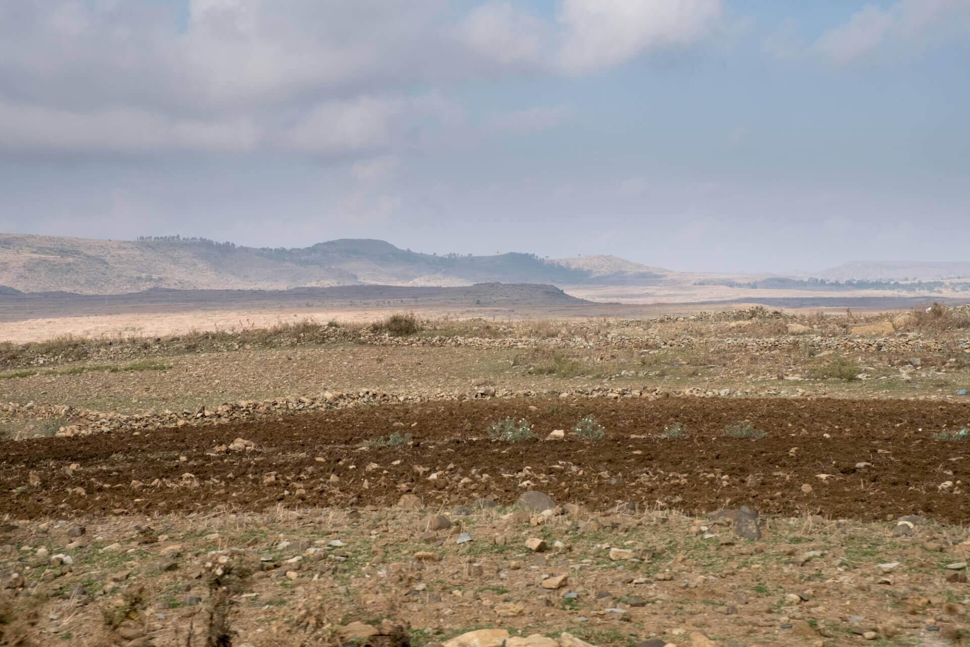 Caritas International Belgique Transformez ce paysage aride en une oasis de verdure