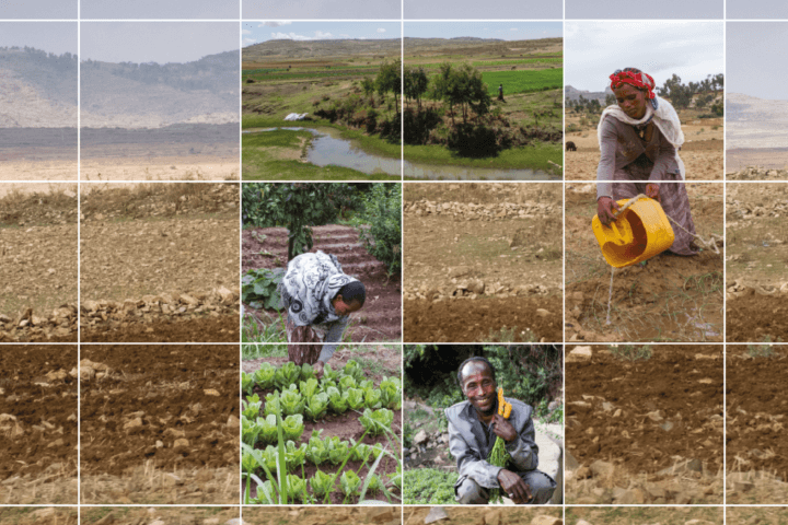 Caritas InternationalTransformez ce paysage aride en une oasis de verdure