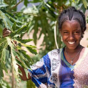 Caritas International Belgique Donnez des arbres fruitiers