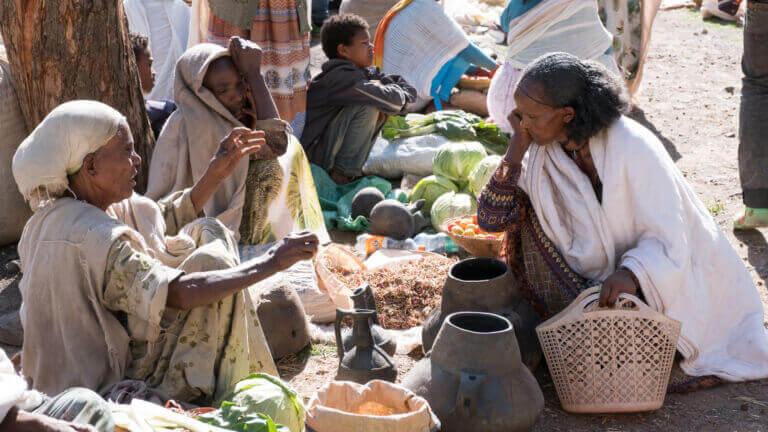 <p>Grâce à votre aide, nous avons assez pour vivre. Ce que nous ne consommons pas est vendu sur le marché, et cela fait toute la différence entre la vie et la survie.</p>