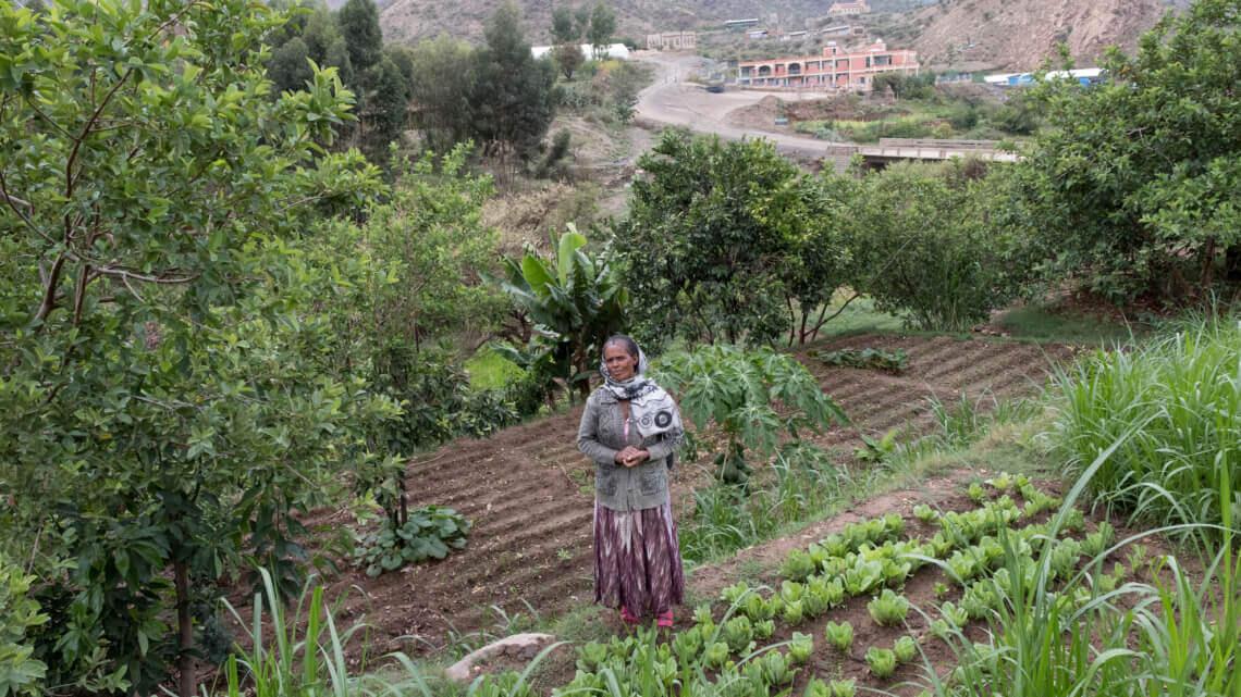 Caritas International België Meer voedselzekerheid dankzij een landbouw afgestemd op klimaatverandering en meer werkgelegenheid