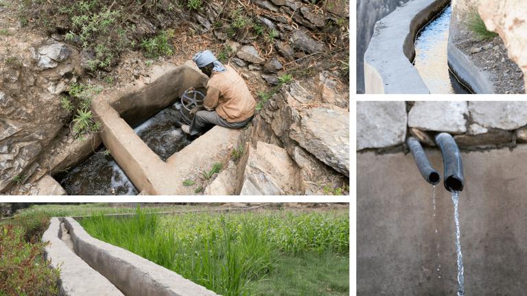 <p>Grâce à un bon système d'irrigation, l'eau n'est plus perdue. Les canaux de terre et de branches ont été remplacés par des canaux en bétons.</p>
