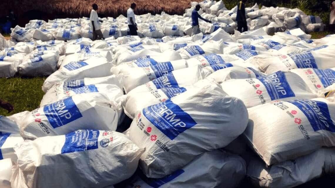Caritas International Belgique «Les besoins sont énormes au Congo»