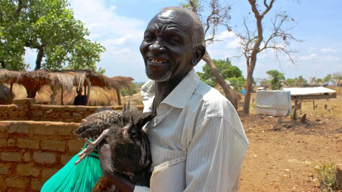 Caritas International België Kippen voor een betere toekomst in Oegandese vluchtelingenkampen