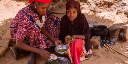 Caritas International Belgique Les mères au bord du désespoir cueillent les feuilles des arbres pour nourrir leurs enfants