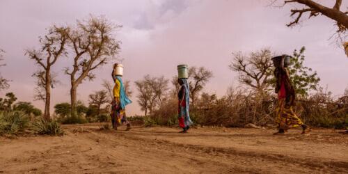 Caritas International België Niger: een kruispunt van uitdagingen