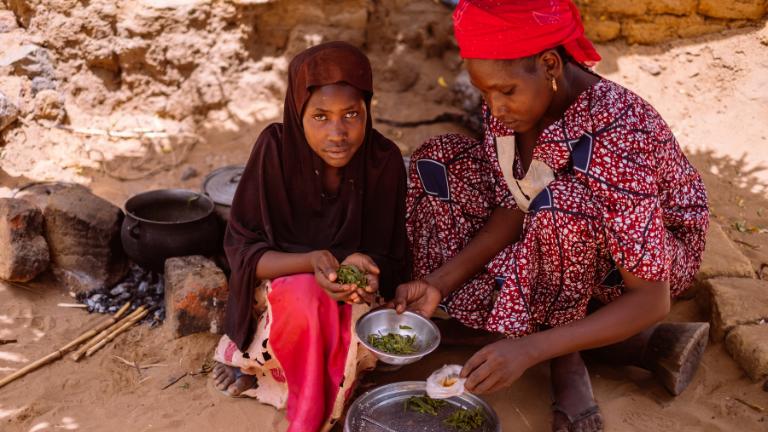 <p>Zouley en Aïcha koken blaadjes. Het is dierenvoer.</p>