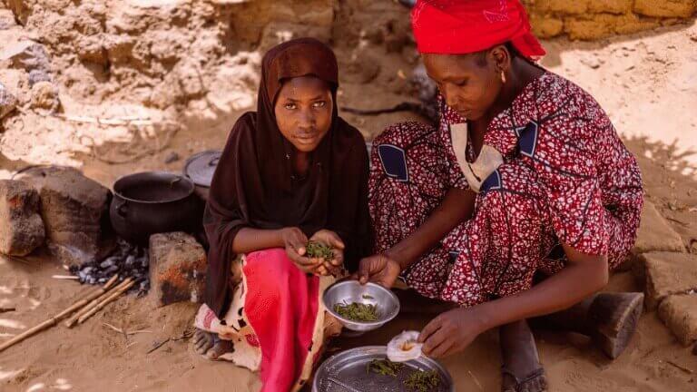 <p>Zouley et Aïcha cuisinent des feuilles.Presque impropres à la consommation.</p>