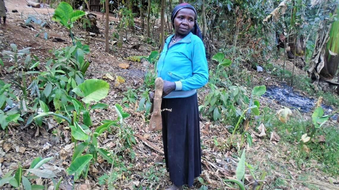 Caritas International België Dringend nood aan drinkbaar water voor de Menja in Ethiopië