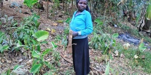 Caritas International Belgium Besoin urgent d'eau potable pour les Menja en Ethiopie