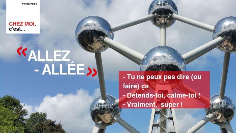 <p>Allez ou allée est une expression utilisée dans toute la Belgique mais avec des écritures différentes en français et néerlandais. L'expression a de nombreux sens (Détends-toi, tu ne peux pas dire/faire ça, vraiment?, etc.) et parfois aussi s'utilise sans réelle signification.</p>
