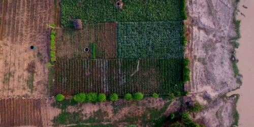 Caritas International België Agro-ecologie: De toekomst voor onze voedselsystemen