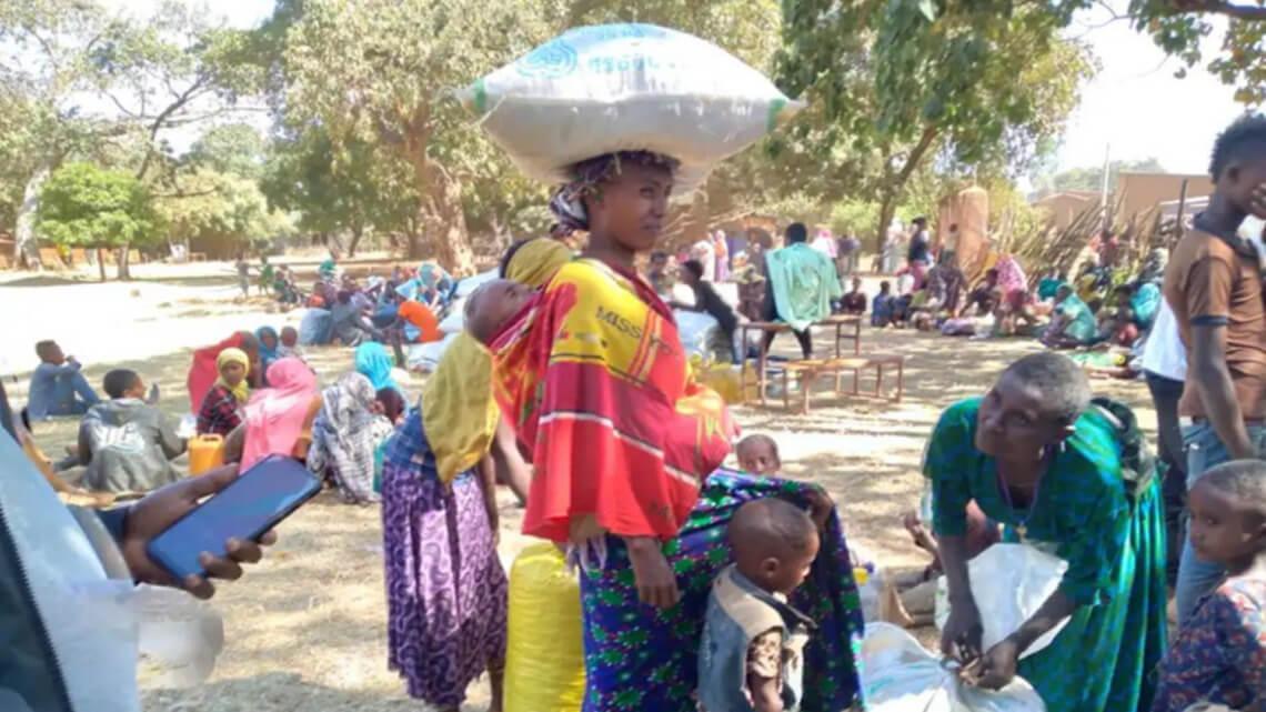 Caritas International Belgique Sauterelles, coronavirus et guerre augmentent l'insécurité alimentaire en Éthiopie