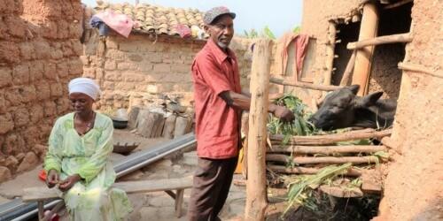 Caritas International Belgique Rwanda: l'aide alimentaire ne peut attendre