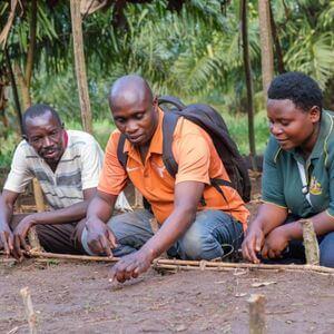Burundi Venant, président de la pépinière, Kirundo