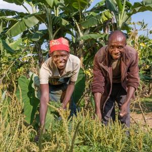 Burundi Jérôme et Monique, agriculteurs à Gisuru (Ruyigi)