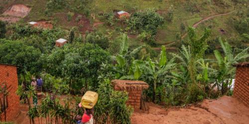 Caritas International Belgique «Quand les haricots sont finis, on mange les feuilles» (témoignages)
